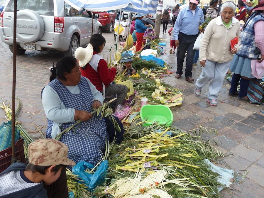 Cusco Palms